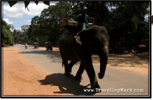 Photo: Elephant Ride at South Gate of Angkor Thom, Leaving Bayon Temple