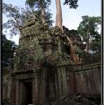 Photo: Ta Prohm, the Mating Place Between Ancient Structures and Huge Trees