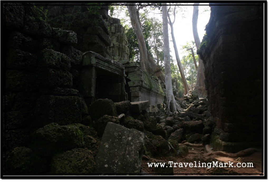 Photo: Jungle Reduced Parts of Ta Prohm Into a Pile of Rocks