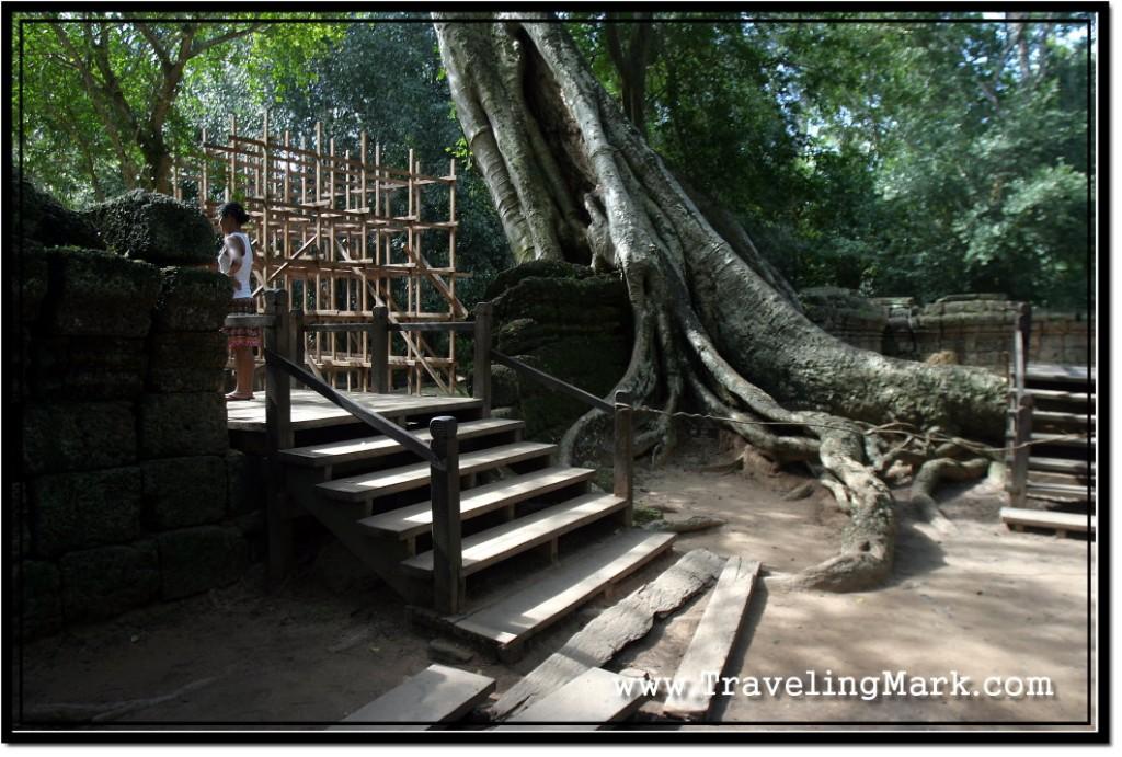 Photo: Ta Prohm Second Outer Enclosure Entrance