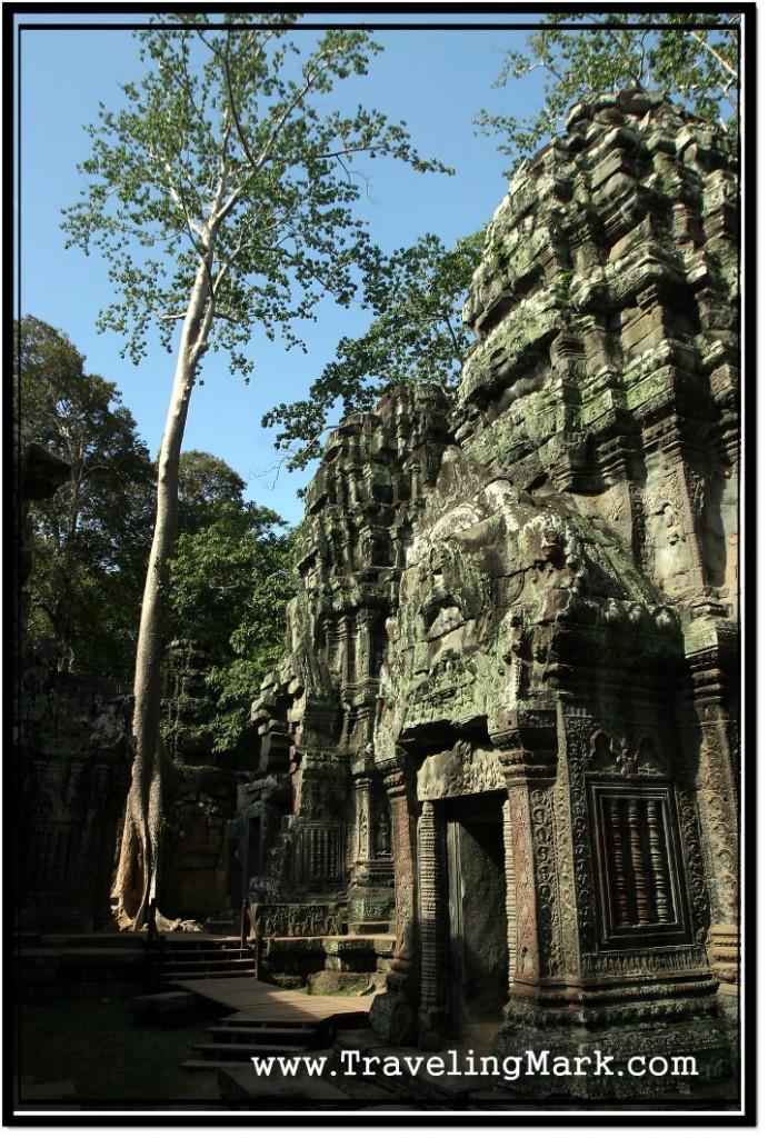 Photo: Ta Prohm Temle Proper, Angkor, Cambodia