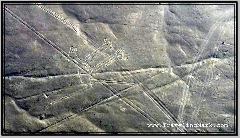 Photo: Nazca Lines Image of Dog (Perro)