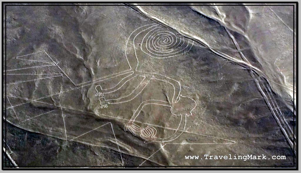 Photo: Nazca Lines Image of Monkey (Mono)