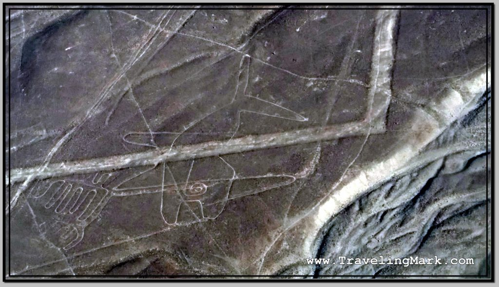 Photo: Nazca Lines Image of Whale (Ballena)