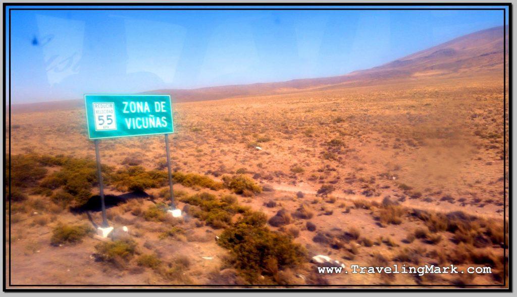 Photo: Road Sign Warns of Wild Roaming Vicunas
